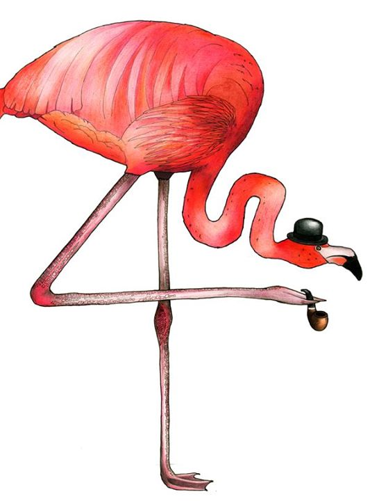 birds in hats flamingo