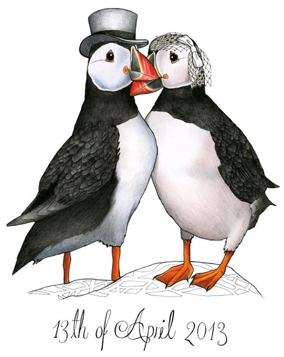 birds in hats puffins