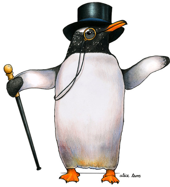 birds in hats sale penguin